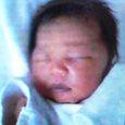 平成17年6月12日生・・生まれて3日目です。名前は未だです。