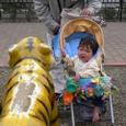 動物園の広場の虎さんに、(^^)\(゜゜)いいこしたのね。