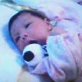 帆夏(ほのか)です。平成17年6月12日生・今日は、生まれて12日目です。